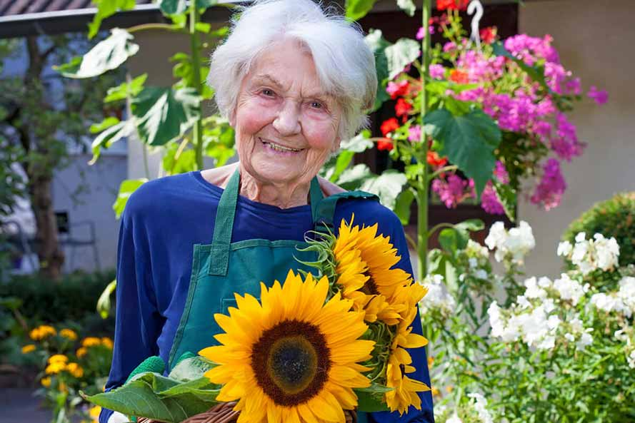 Smiling senior woman in garden with sunflowers