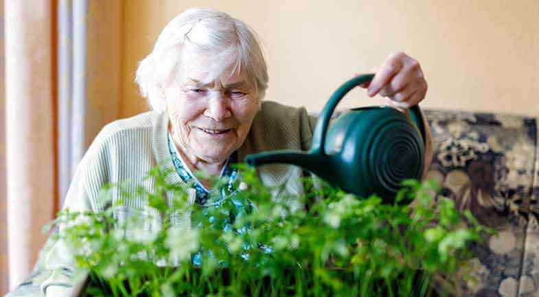 Older woman watering a plant with a watering can
