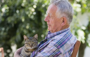 Dementia care in your own home