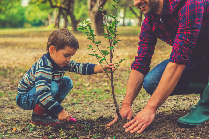 Man planting a tree with his young son