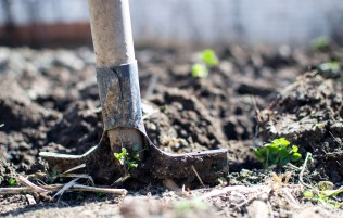 Home Care Packages and gardening services