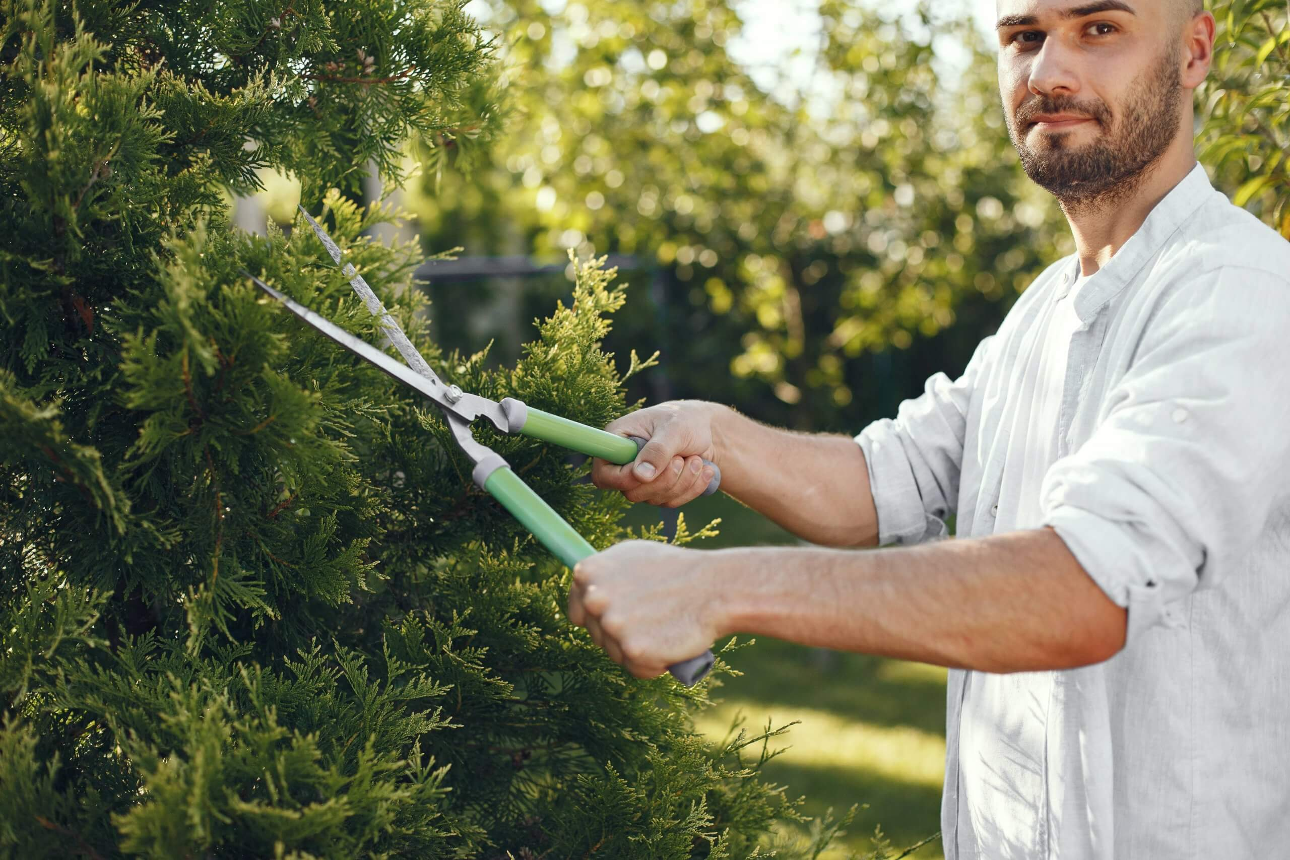 Gardening services and the NDIS